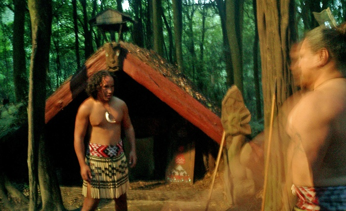 Maori Warriors practice fighting skills - Tamaki Village New Zealand