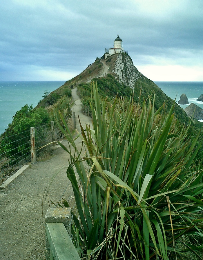 nugget point lighthouse south island NZ