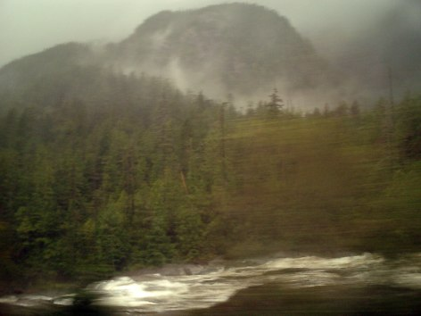 Travel Photo Canada 2003 by David J Rodger Vancouver Island on the route to Tofino