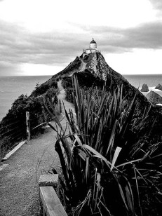 New Zealand Nugget Point southern most point of South Island