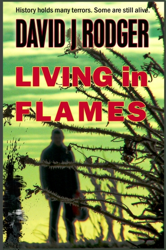 Bristol horror and cyberpunk - Living in Flames a novel by British Sci-Fi and Dark Fantasy author David J Rodger