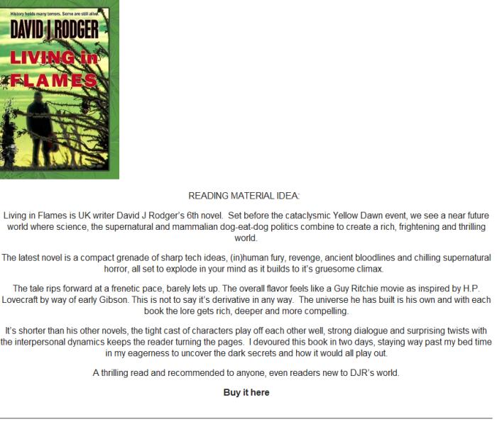 Book Review - Living in Flames - a Sci-Fi Cyberpunk Dark Fantasy Horror set in UK
