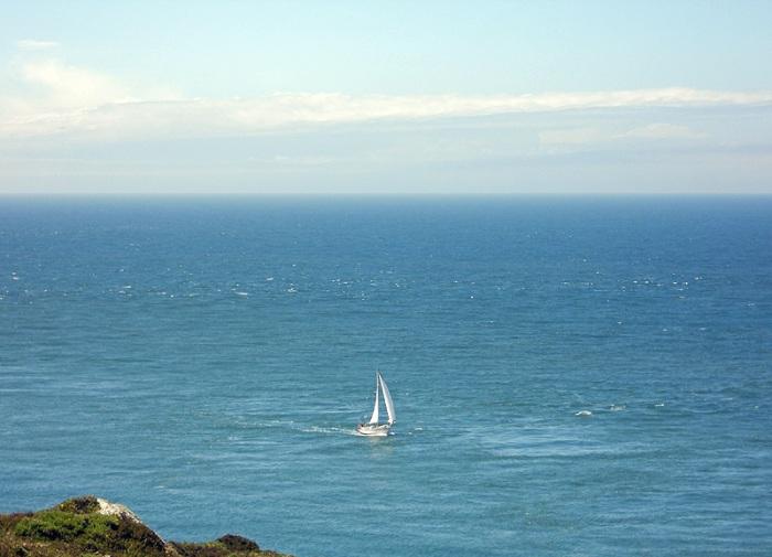 White sail yacht