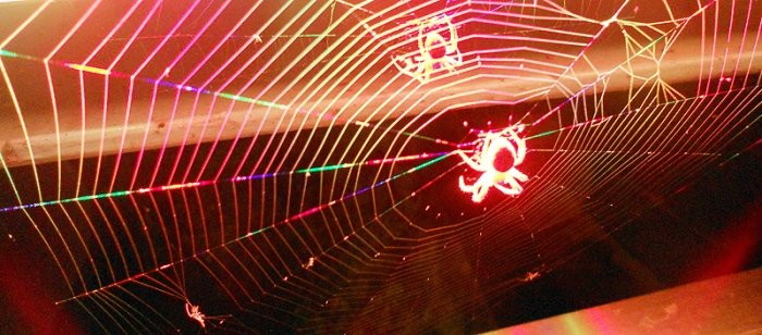 luminous spiders on wisla bridge krakow poland