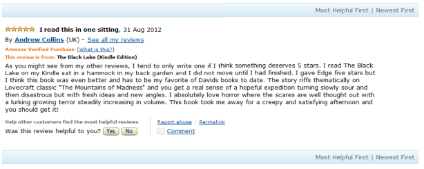 Amazon Review of The Black Lake - a Cthulhu Mythos ghost story by British Sci-Fi & Dark Fantasy Author David J Rodger