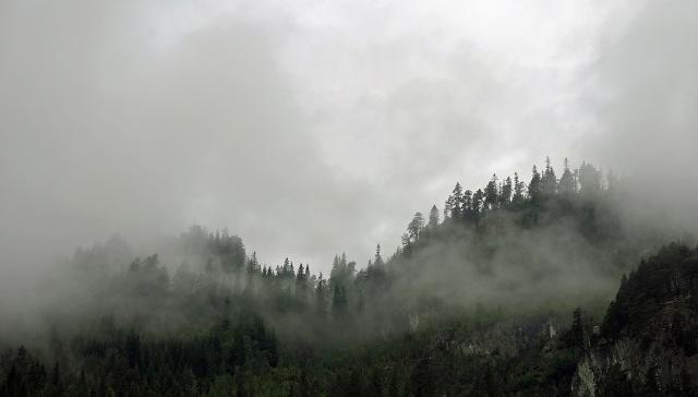 Роскошные пейзажи Норвегии - Страница 3 Travel-photo-arctic-circle-norway-misty-mountains-like-smoke-rising-from-forest-image-copyright-david-j-rodger