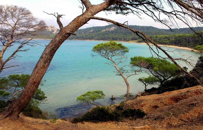 South of France Coastline - 1