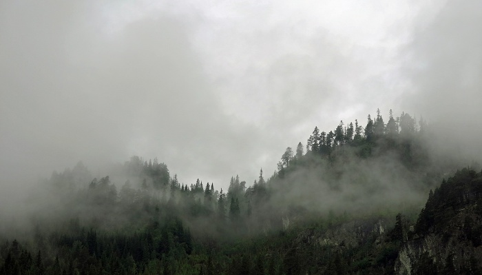 travel photo arctic circle  Norway - misty mountains -  like smoke rising from forest - image copyright David J Rodger