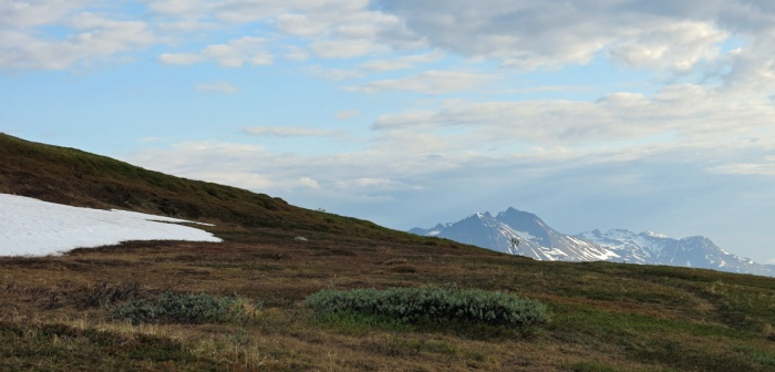 Travel photo Norway - Tromsø - view from  Mount Fløya - grass land and distant mountain - copyright David J Rodger