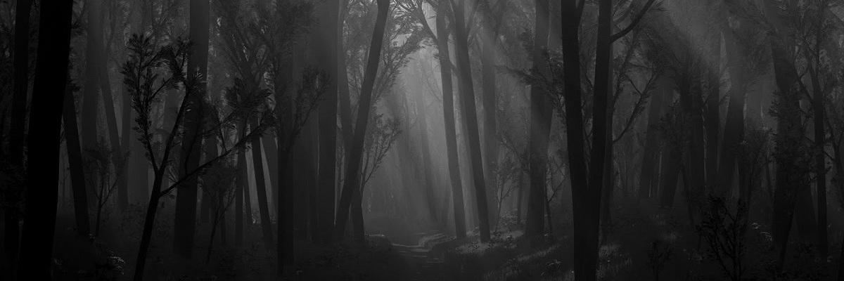 The Grove A Free Dark Fantasy Short Story David J