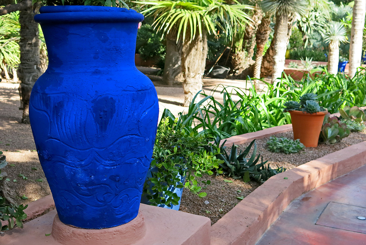Violet Indigo Plant Pot In Jardin Majorelle, Marrakech, Morocco