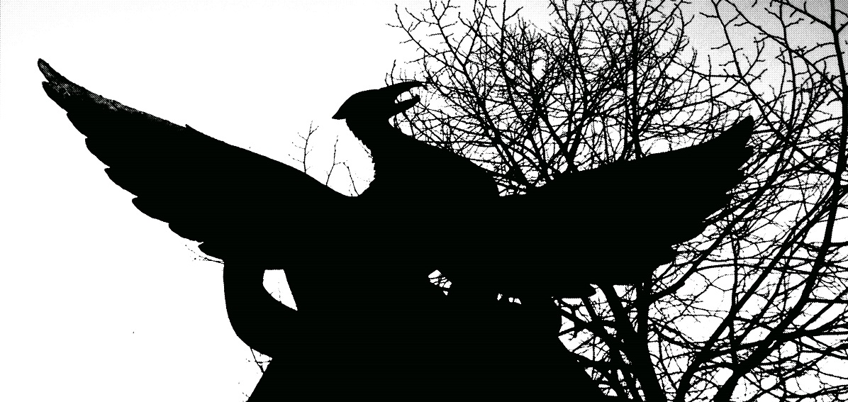 photograph of mythical phoenix by David J Rodger