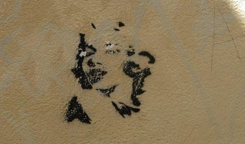 street art graffiti - Salamanca Spain - Monroe
