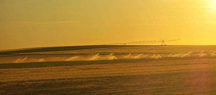 travel photo golden sunset on landscape between Salamanca and Valladolid rural scene
