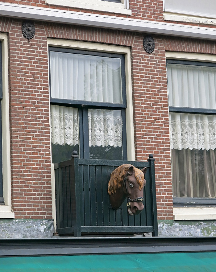 surreal building ornamentation in Jordaan Amsterdam - horse head sticks out of window box