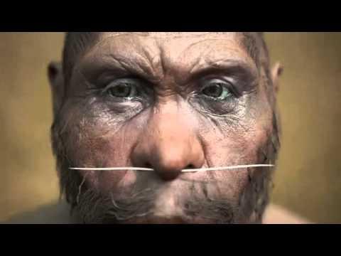 Homo erectus Man