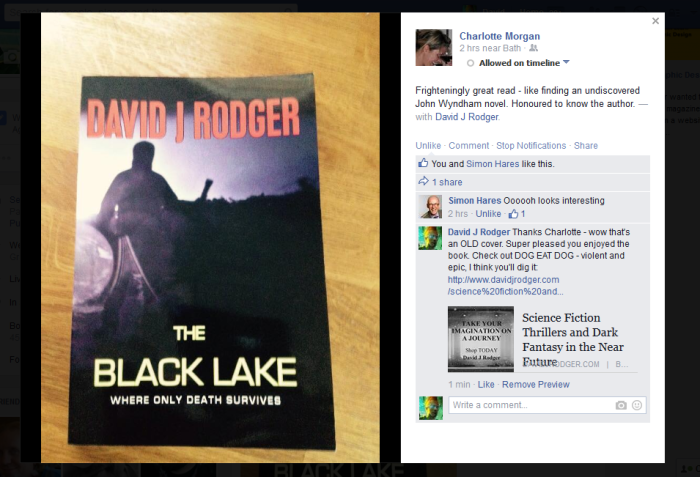 Publisher says - reading The Black Lake by David J Rodger was like finding undiscovered John Wyndham novel