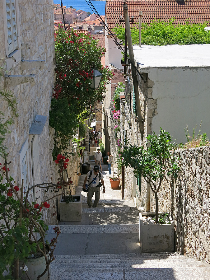 Travel photos Hvar Town - my commute to work - daily climb towards Spanish Fortress to spend morning writing - image David J Rodger